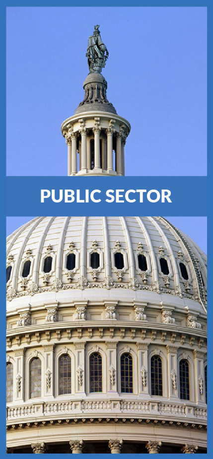 public sector-01.jpg