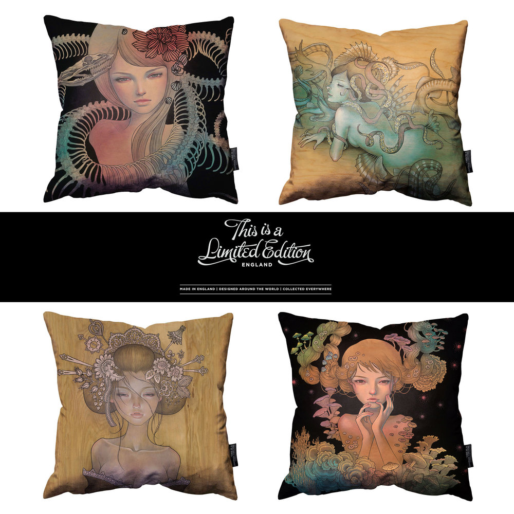 'This is a Limited Edition' pillows. 2014.