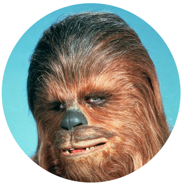 chewy-2.png