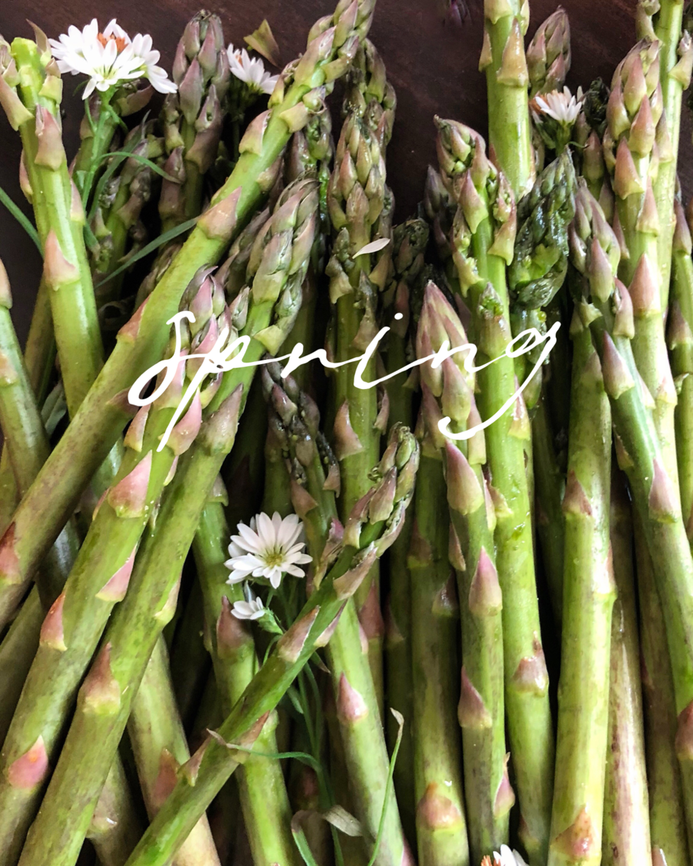 What's In Season — - My personal favorite ingredients to use during spring:Asparagus, Leeks, Peas, Artichokes, Carrots, Strawberries, Ramps, Beets, Cucumbers, Cherries, Rhubarb & Arugula
