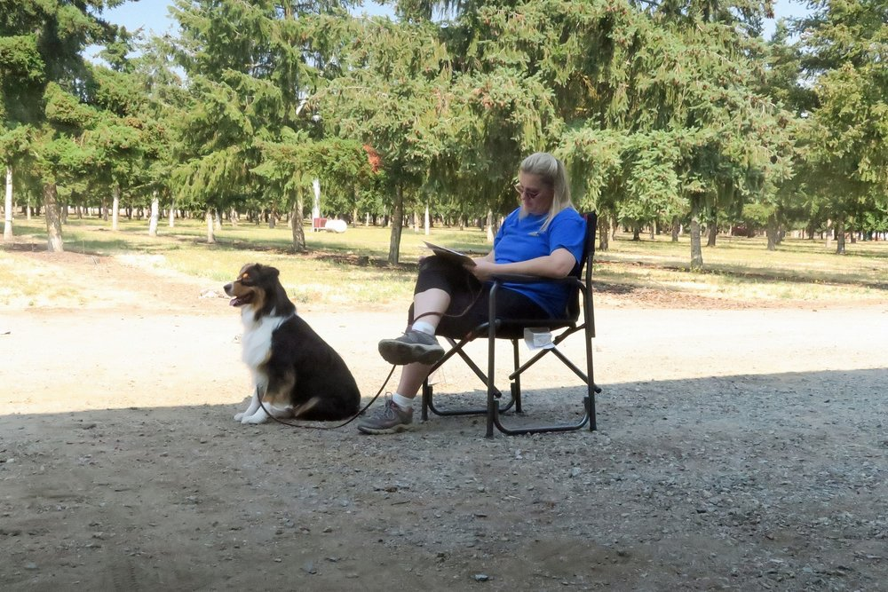 Item 10: Supervised Separation - This test demonstrates that your dog can be left with a trusted person and will maintain training and good manners. The owner will go out of sight for three minutes. The dog does not have to stay in position but should not continually bark, whine, or pace unnecessarily, or show anything stronger than mild agitation or nervousness.