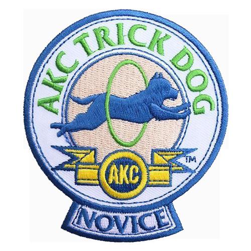 trans_novice_trick.png