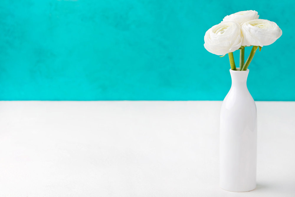white-ranunculus-flowers-in-a-ceramic-vase-P47U6HN.jpg