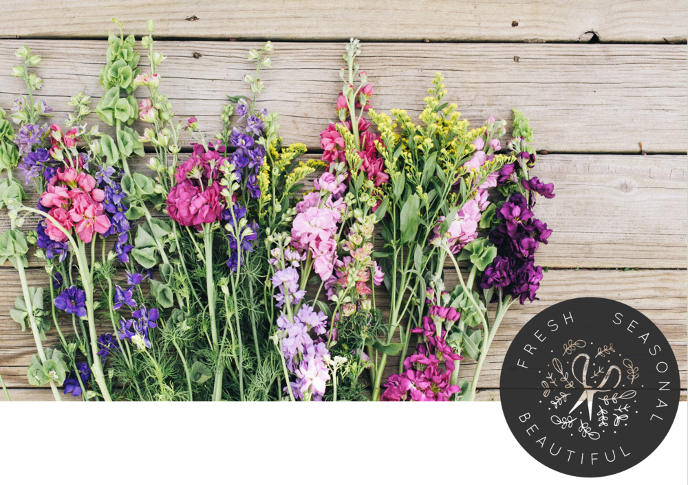 A collection of flowers, arrange against a wooden wall, with the words fresh, seasonal, and beautiful inside a black circle in the bottom right corner.