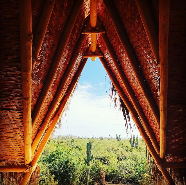 Second Story Yoga Deck Heaven!! #yogaretreat #mountainview #oceanview #youregonnaloseyourmind #retreat #livewell #nobaddays #todossantos #wewillshowyoutheway