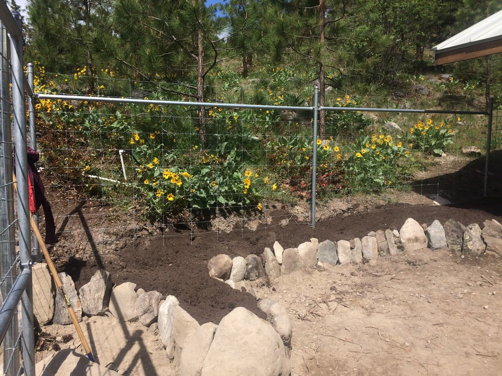 Rock from the site and Native plants protected
