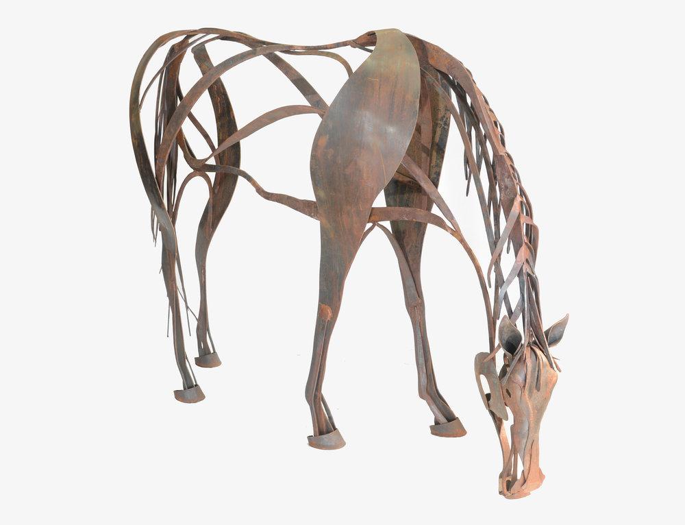 portfolio horse 2.jpg