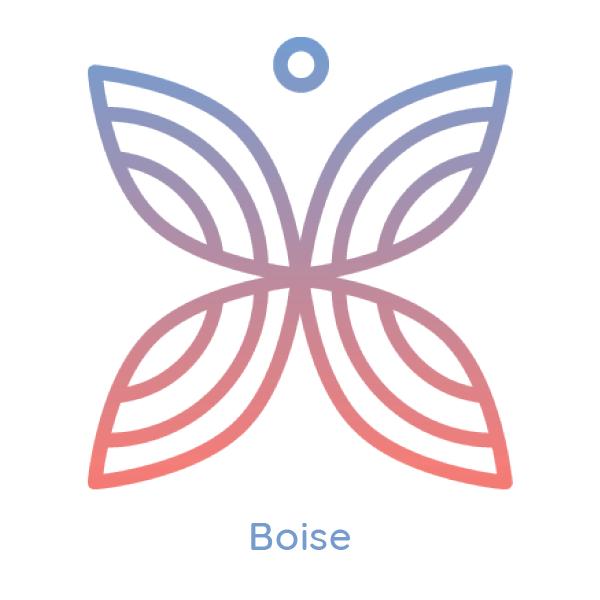 Boise-weblogo.png
