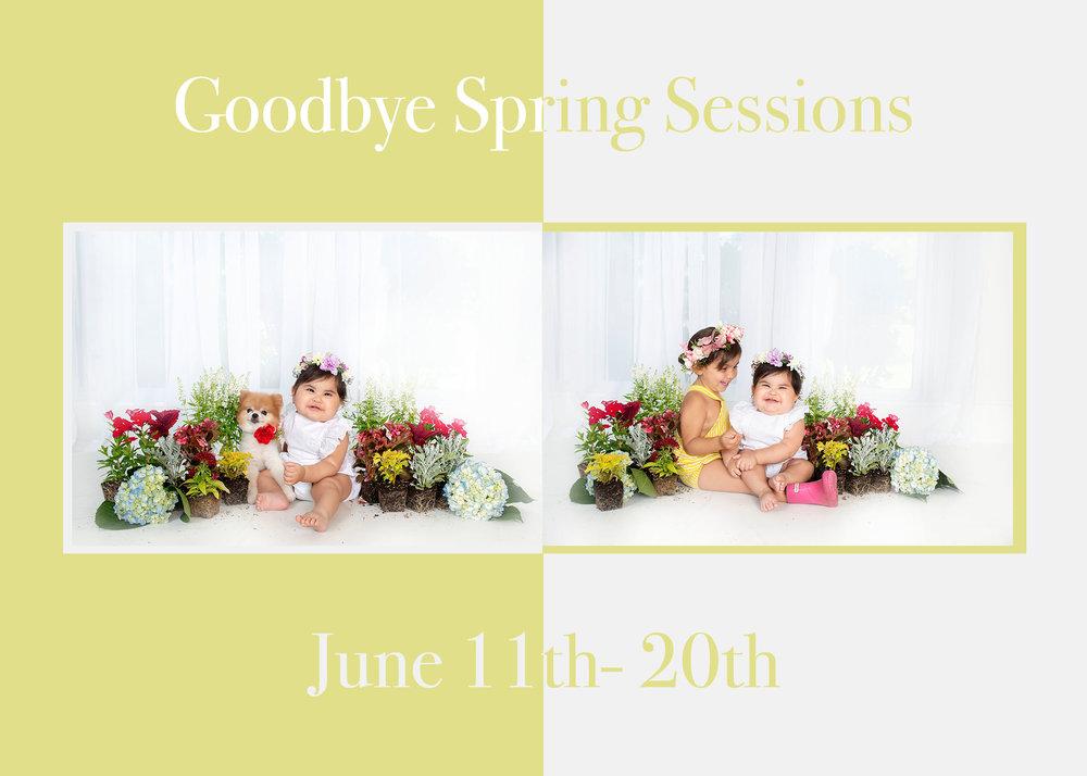Goodbye Spring.jpg