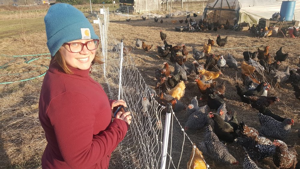 katie and chickens.jpg