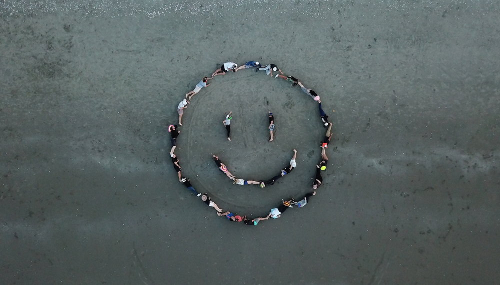 Drone Photography | up+up | Waiheke Beach.JPG
