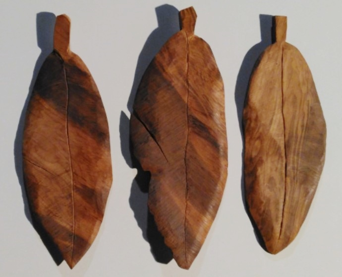 Wood leaves  (2).jpg