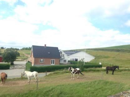Horses, Mols Bjerge