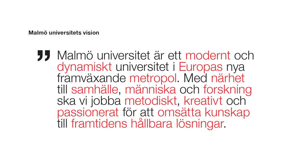 MAU_vision2.jpg