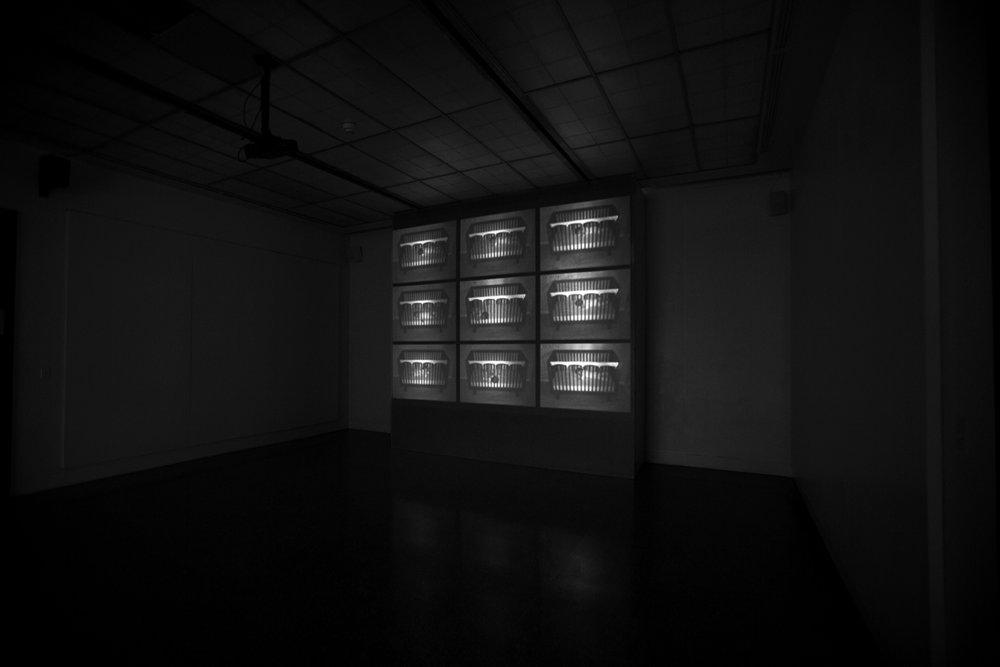 'The Ordinary and the Domestic' video installation.