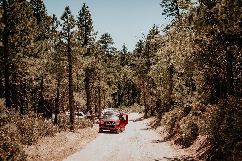 forest-wedding-big-bear-california-wedding-photographer (15).jpg