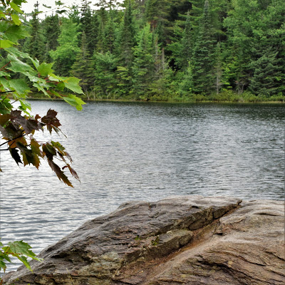 Pure Horse Sense Blog- Algonquin Park hike. Lake view