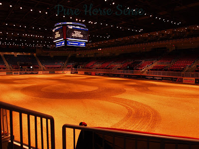 Pure Horse Sense Blog- Ricoh Coliseum at the RAWF