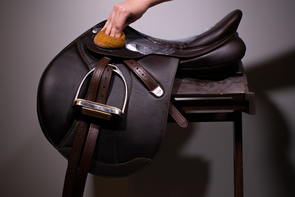 conditioning bates saddle.jpg