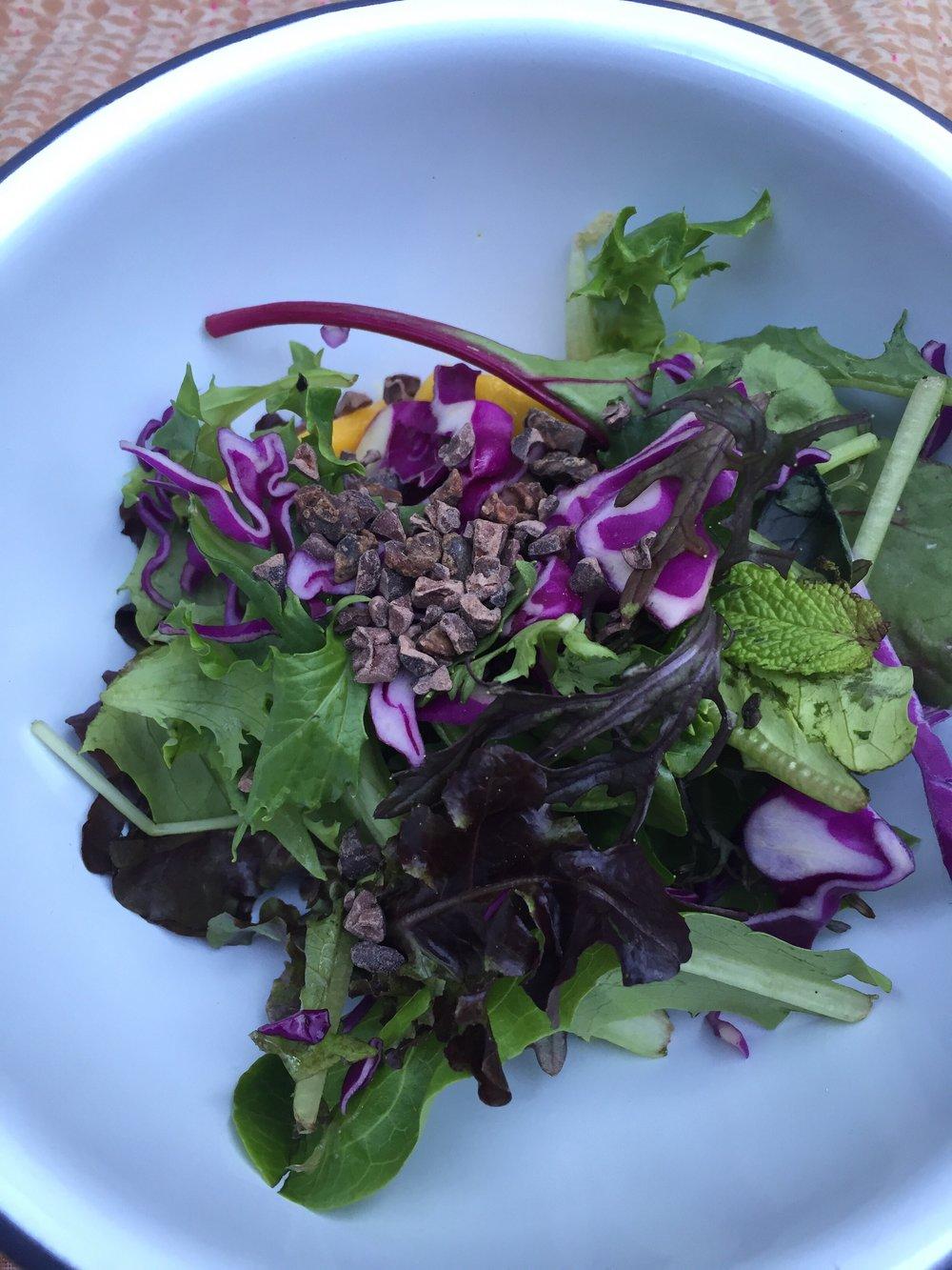 Salad-with-cacao-nibs.jpg