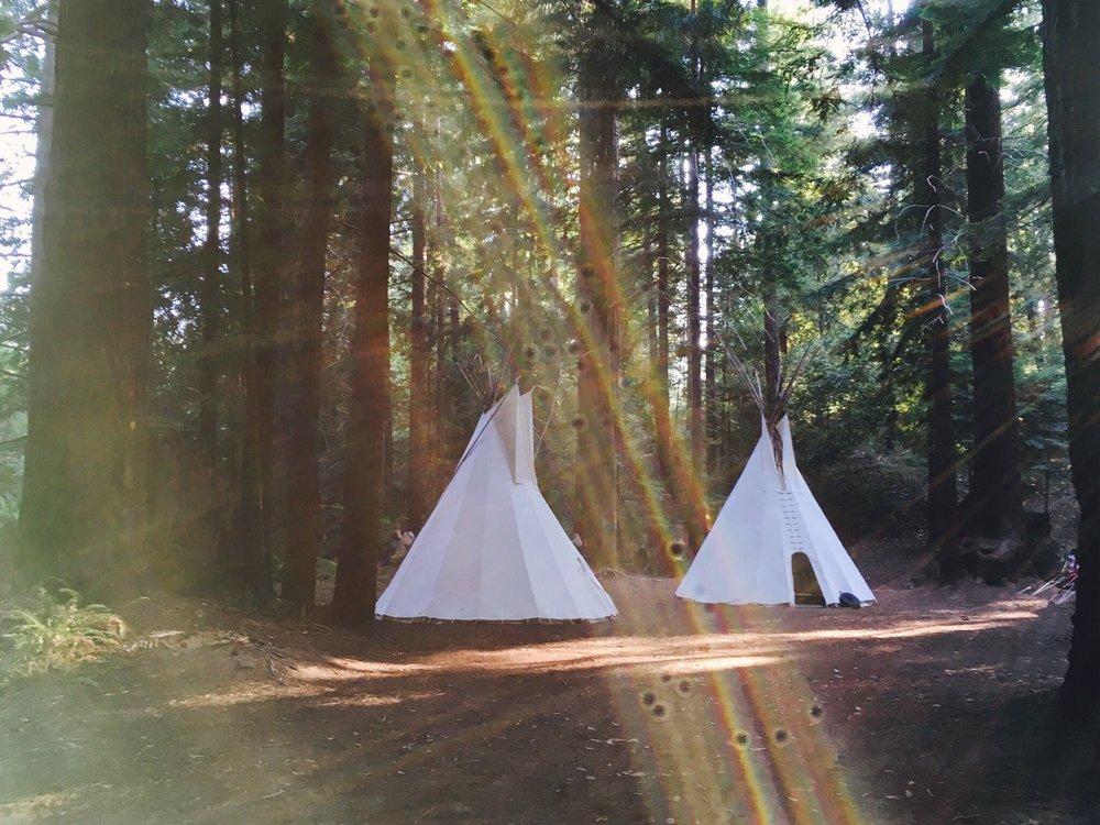Tents-at-camp.jpg