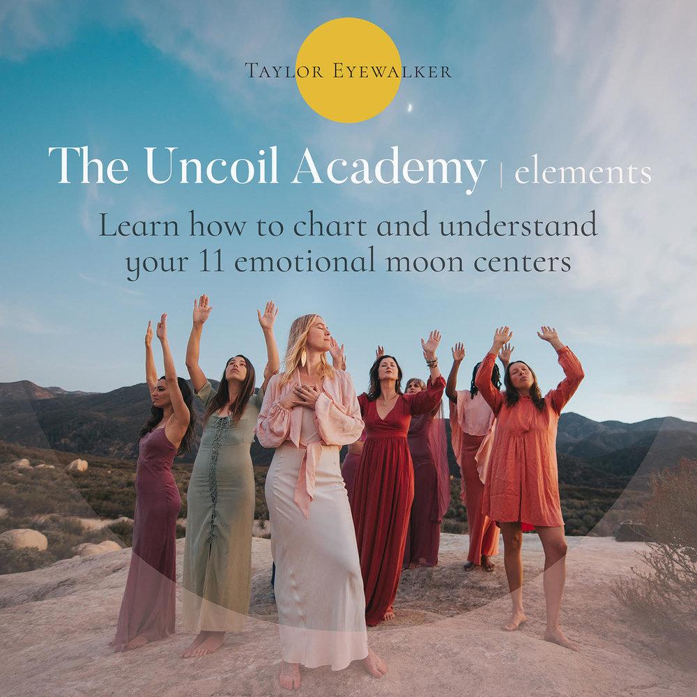 The Uncoil Academy.jpg