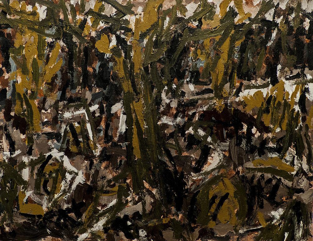 The olive grove   Acrylic on canvas 42x55cm  2017