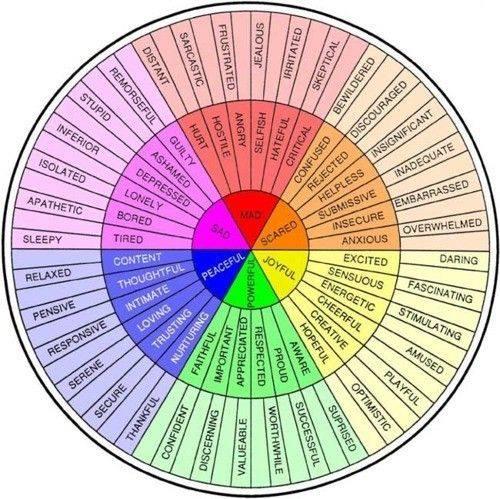 La rueda de los sentimientos, desarrollada por la Dra. Gloria Wilcox