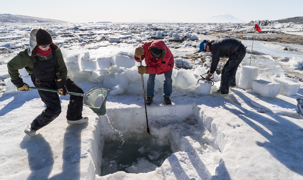 The hard labor of clearing a dive hole after it was unused for 5 days. Several feet of ice had formed.
