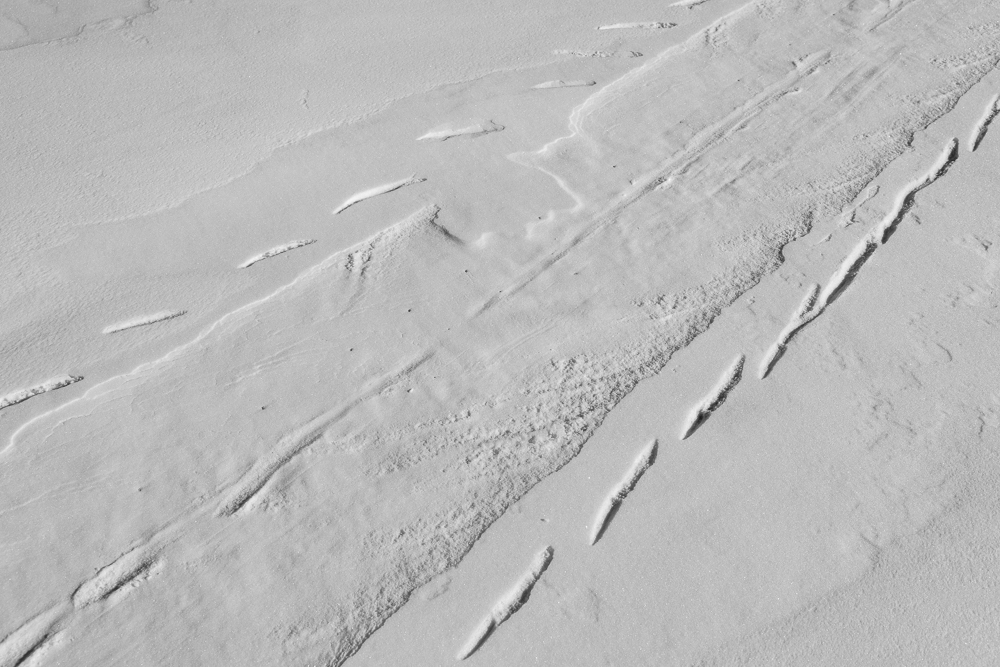 Seal tracks in the snow