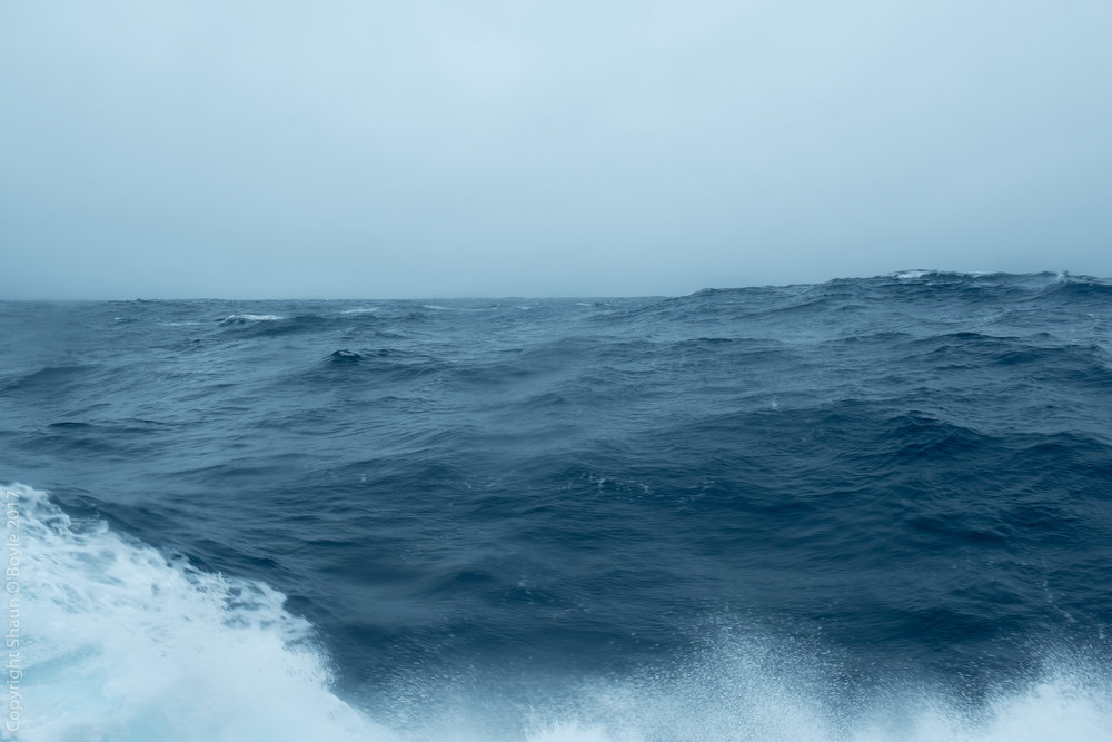Drake Passage in a less welcoming mood. The ship was rocking 15 degrees side to side and plunging vertically 15-20 feet. A never ending roller coaster ride. Did I mention that I was sea sick? Barfalunga for 2 days.