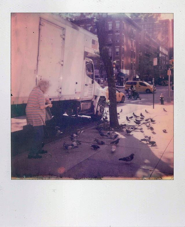 Feed the B I R D S (!) . . . #onestep2 #polaroid #newyork #nyc #feedthebirds #bird #spring #photoporn