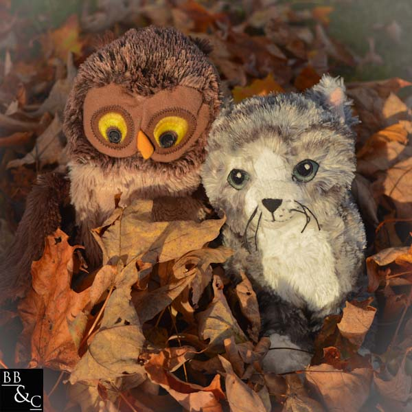 see Hoot? you never know who you'll meet in a pile of leaves.