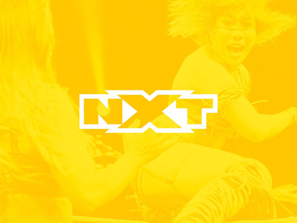 PLT_MF_WWE_Network8.jpg