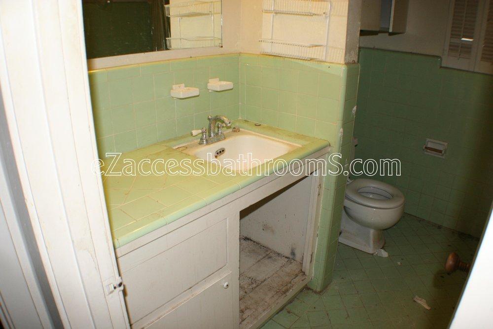 rollin shower ezaccessbathrooms.com 001.JPG