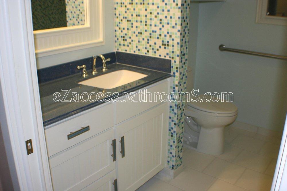 rollin shower ezaccessbathrooms.com 002.JPG