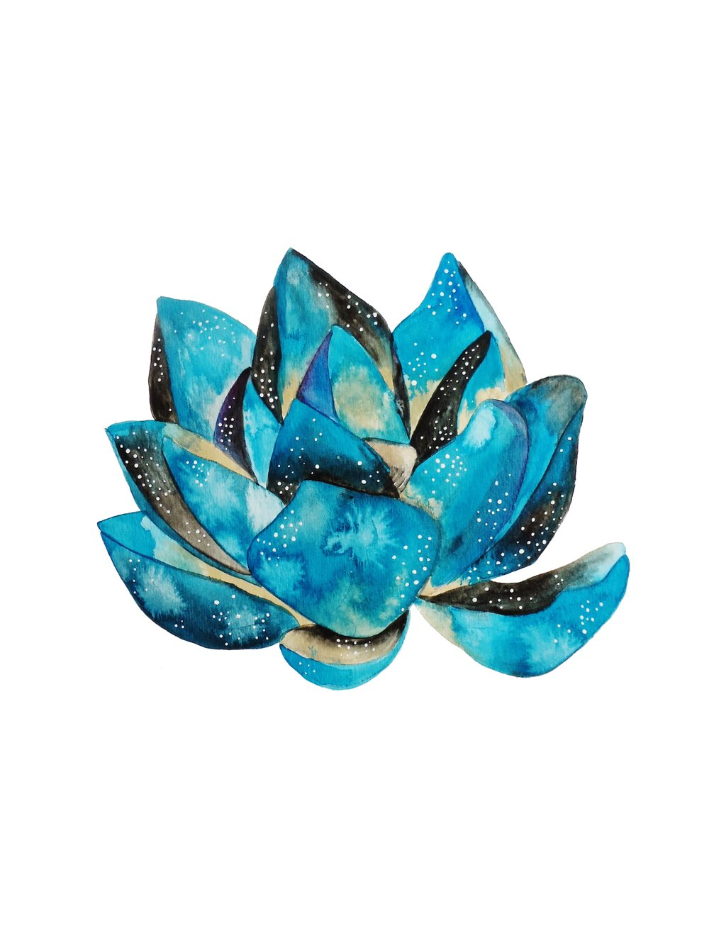 blue lotus flower.JPEG