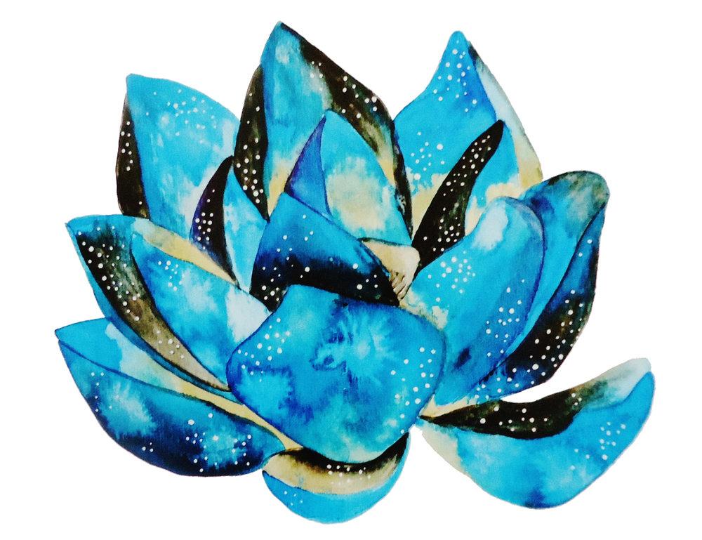 universe lotus.JPG
