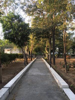Dhamma Sota