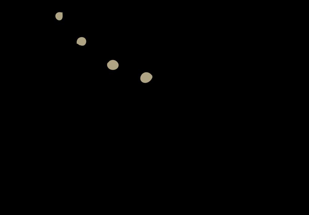 Neuropsychiatrie - Fischer Single Graphic-10.png