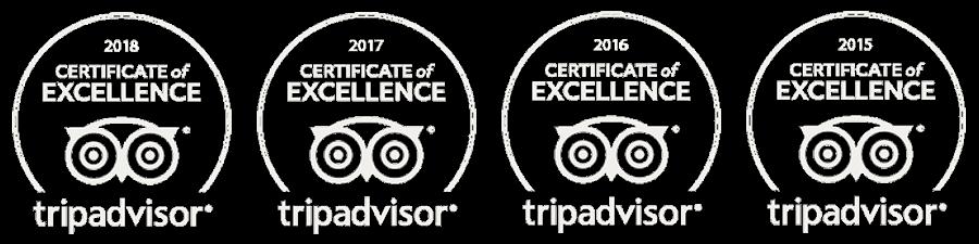 Logo_COE_TRipAdvisor2015-18_BRANCO.png