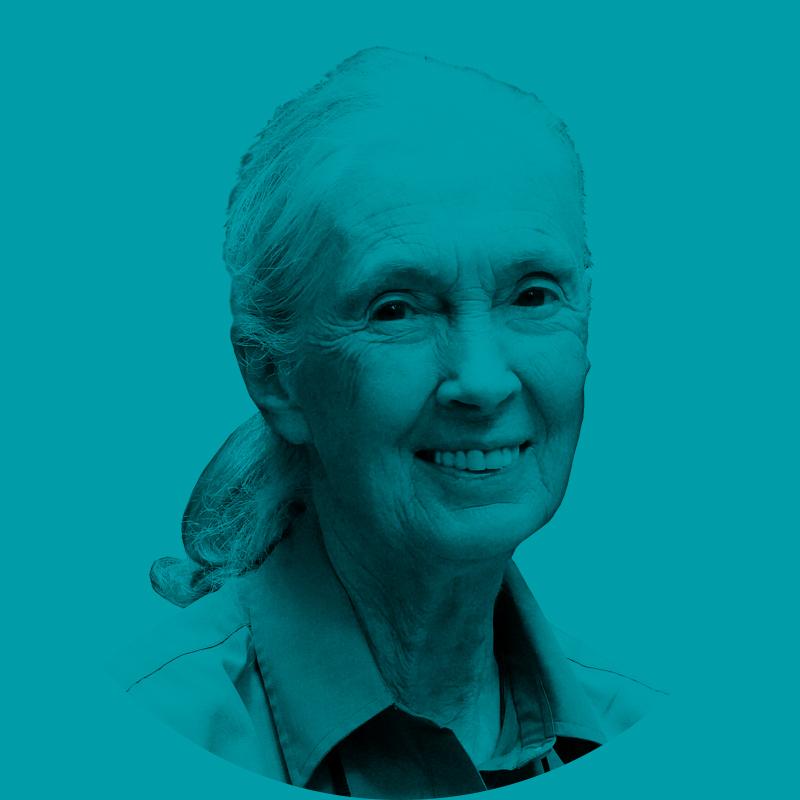Website-Profile-Jane-Green-V1.jpg