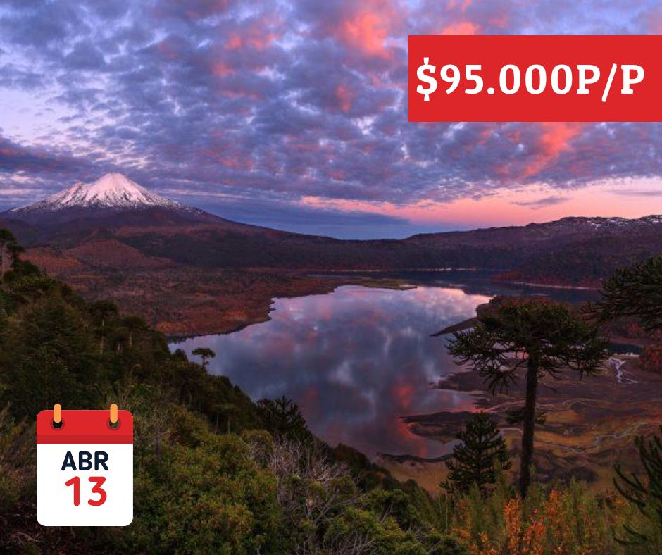 - Tour ConguillioRecorrer uno de los bosques más puros del mundo y conectar con paisajes inolvidables.