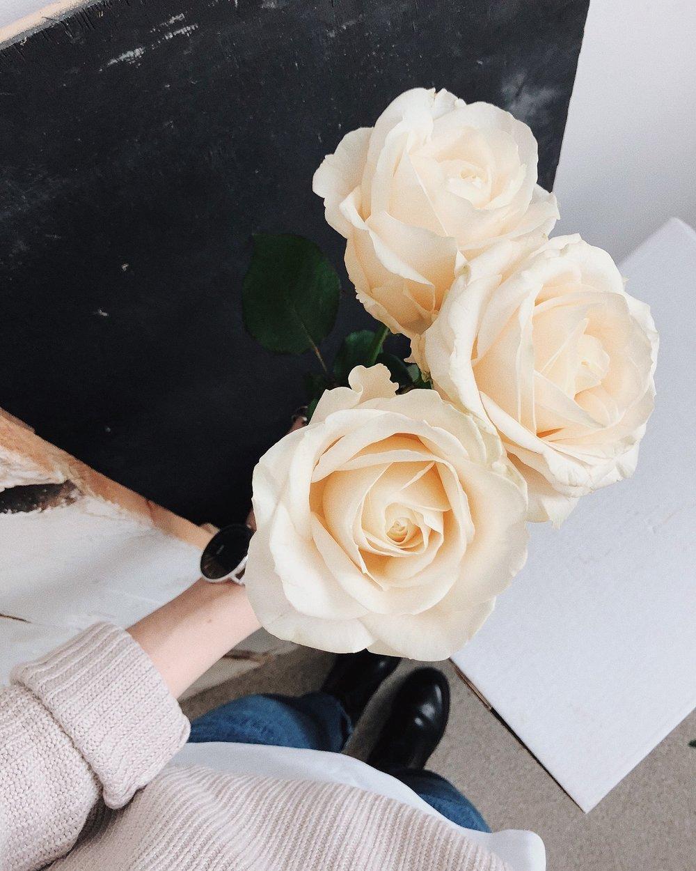 beautiful-bloom-blooming-1451481.jpg