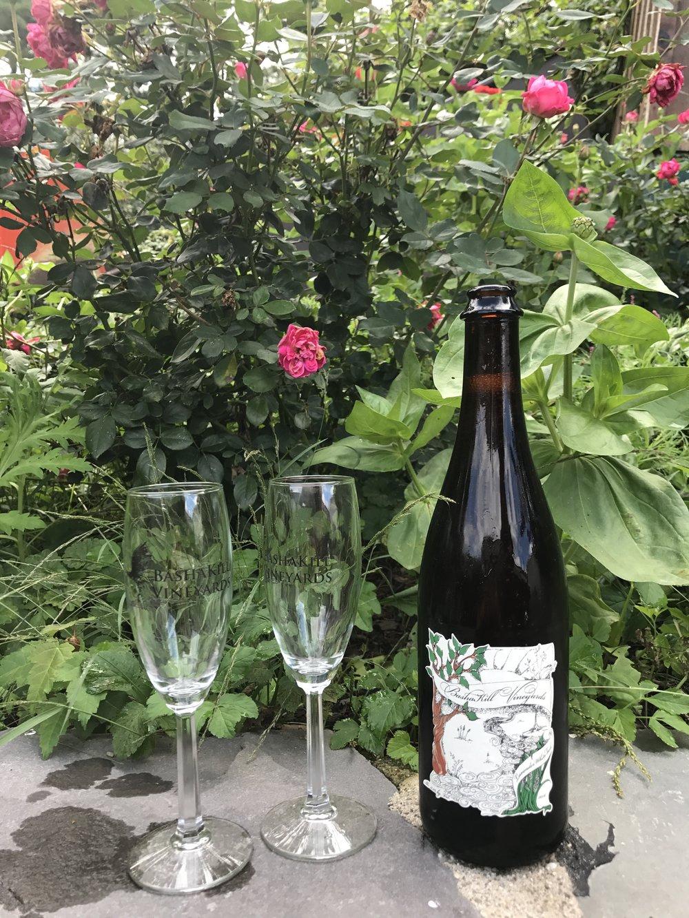Organic wine? we've got it! -