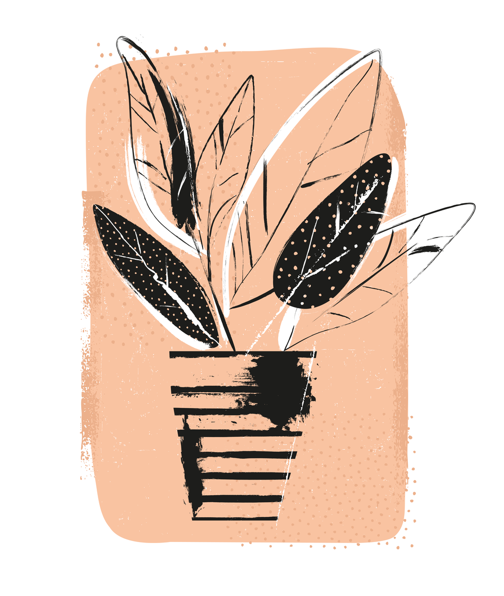 houseplant_web-01.png