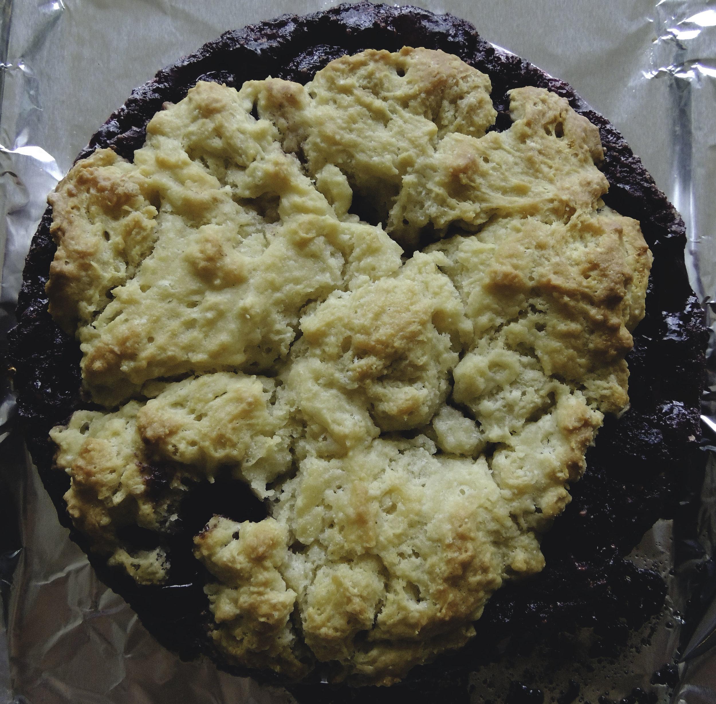 blackberry cobbler 1