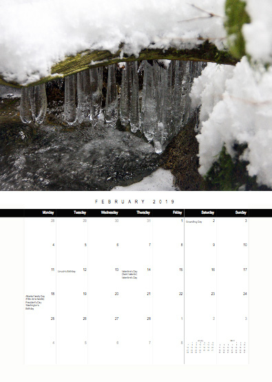 2019-bc-calendar-preview-02-february.jpg