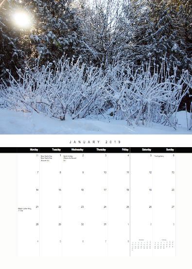 2019-bc-calendar-preview-01-january.jpg