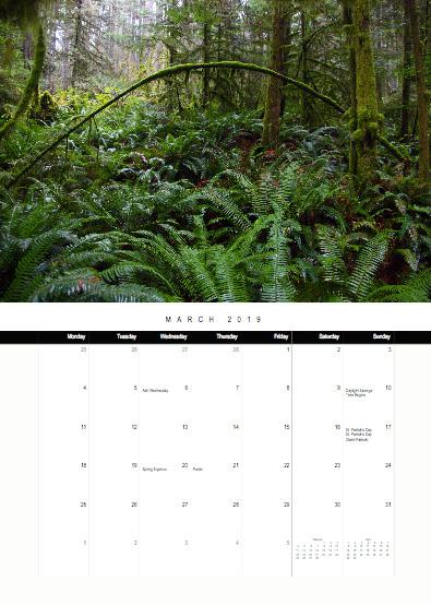 2019-bc-calendar-preview-03-march.jpg